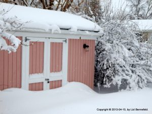tall snowdrifts in front of the garden shed door on 15 April 2013
