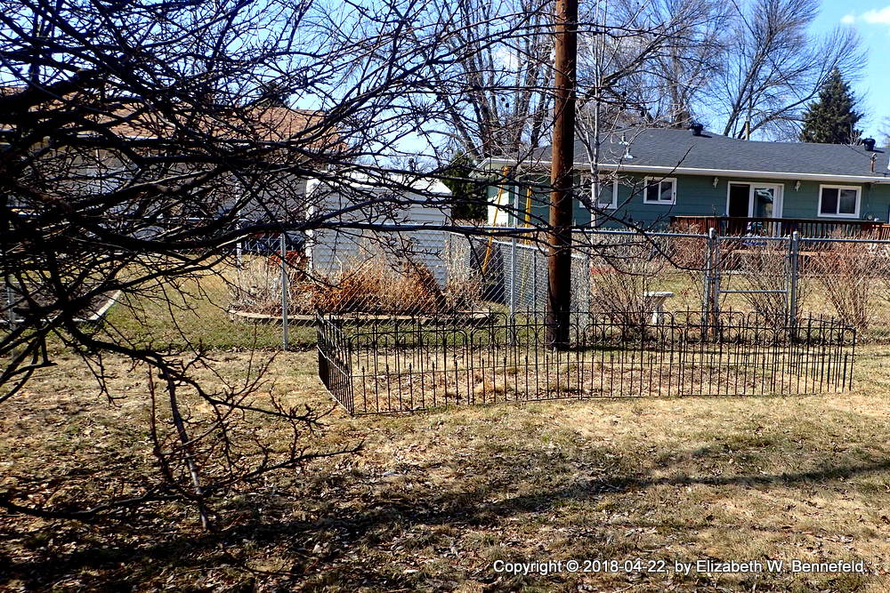 sturdy metal fence surrounding a 50-sq-ft gstarden plot