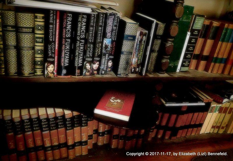 bookshelves beside my rocking chair