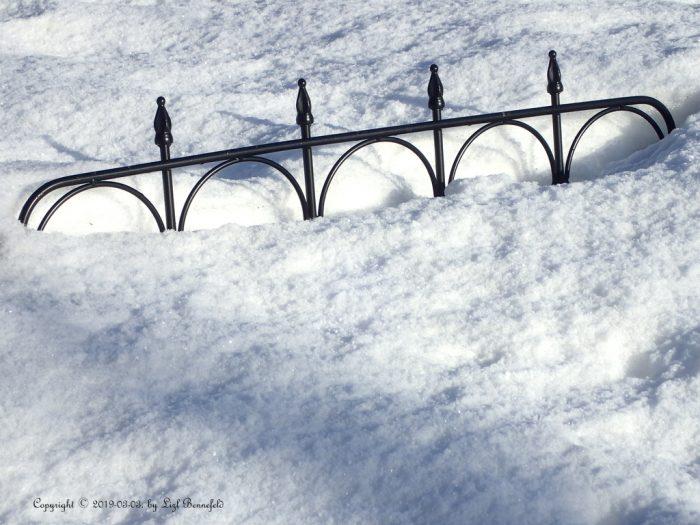 emerging garden fence